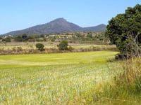 Зачем нужна оценка земельных участков?